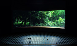 Tenseless-69, Memories, C print, 120x198cm,2009