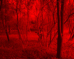 Redscape-26, 120x150cm, C print, 2011