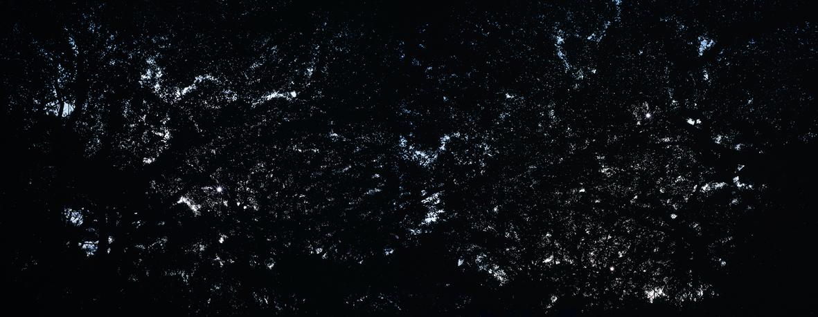Cosmos-3,C print,116x300cm,2010