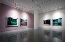 Gallery zandari Solo exhibition 2008-1