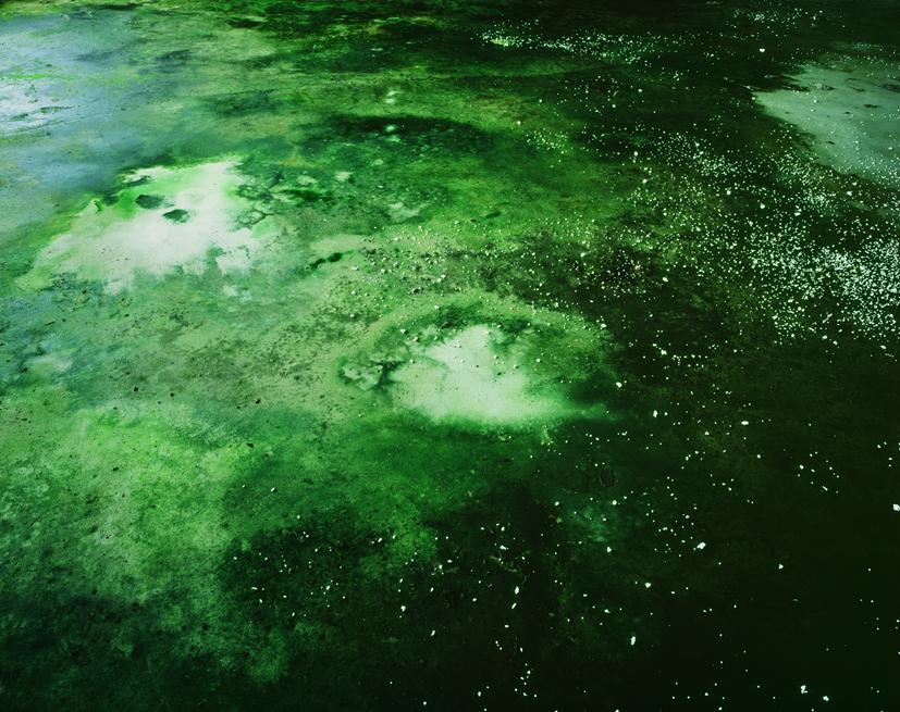 Tenseless-60, The cosmic floor, C print, 103x130cm, 2007