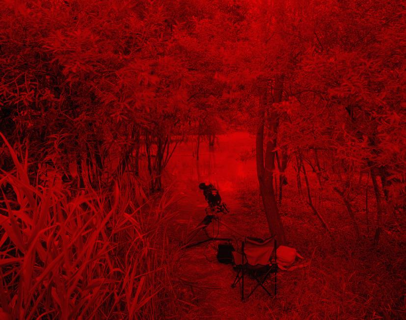 Redscape-29, 120x150cm, C print, 2009