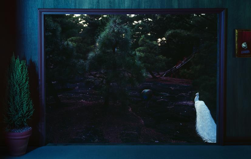 Tenseless-64,The double screen,C print, 120x190cm,2009