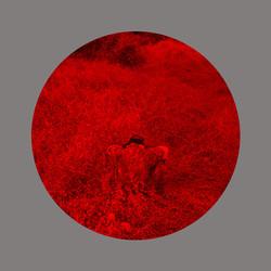 Redscape-14, 120x150cm, C print, 2013