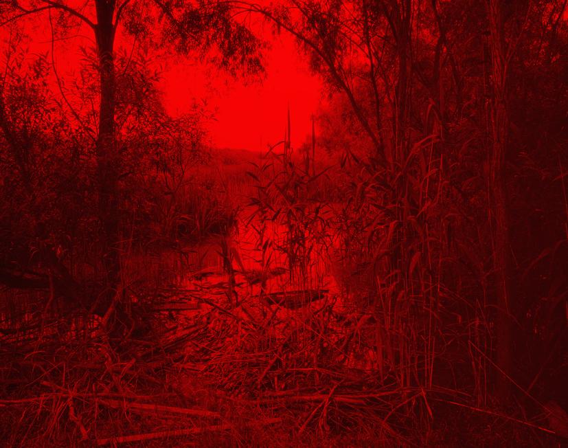 Redscape-1, 120x150cm, C print, 2009
