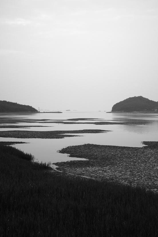 Fishhooks-55, Tide landscape, 50x75cm,C
