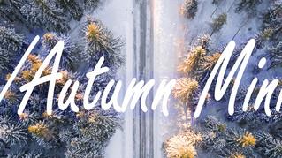 Winter & Autumn Mini Sessions