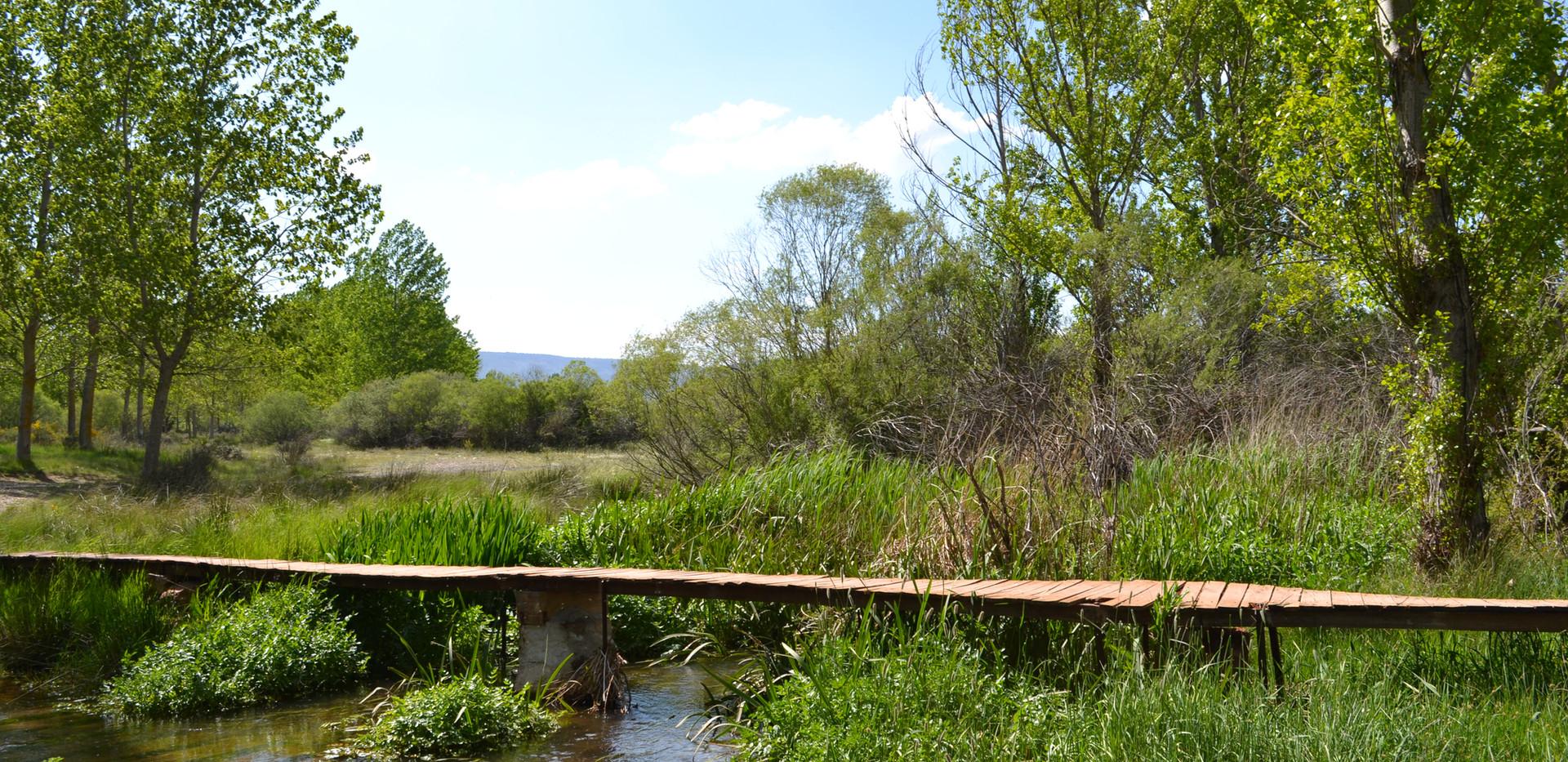 Pasarela sobre el río en la entrada a la finca