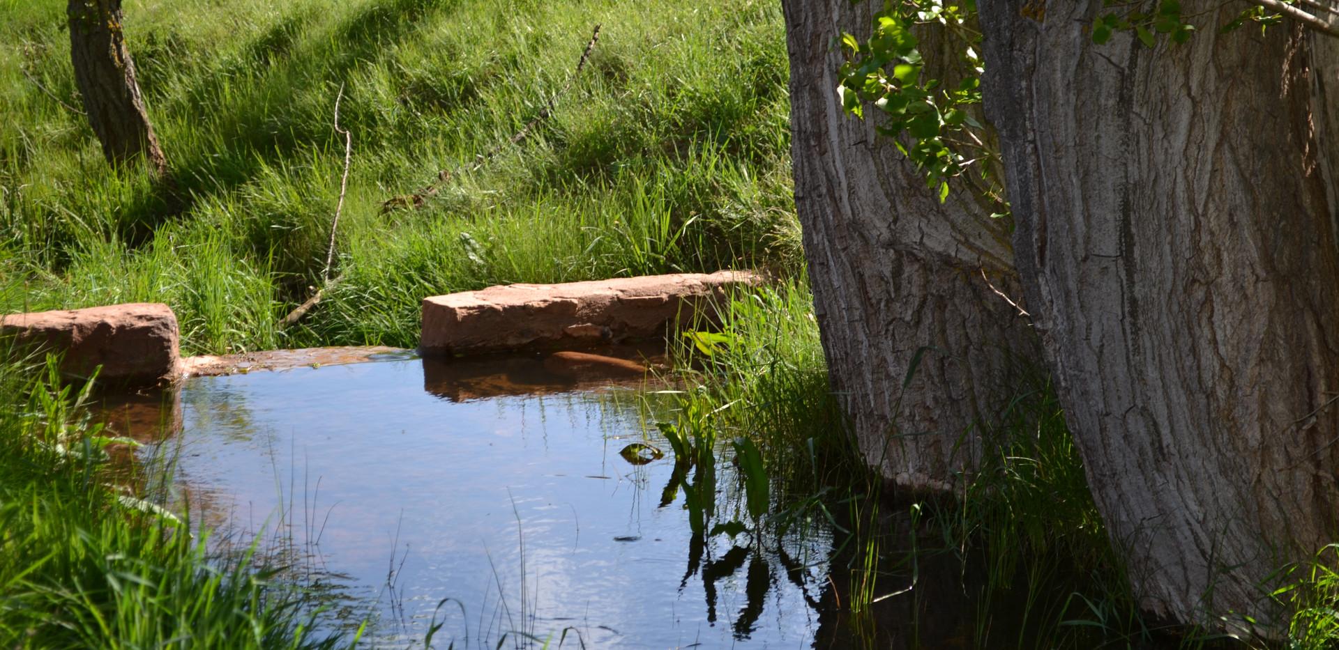 Canal de agua que cruza la finca