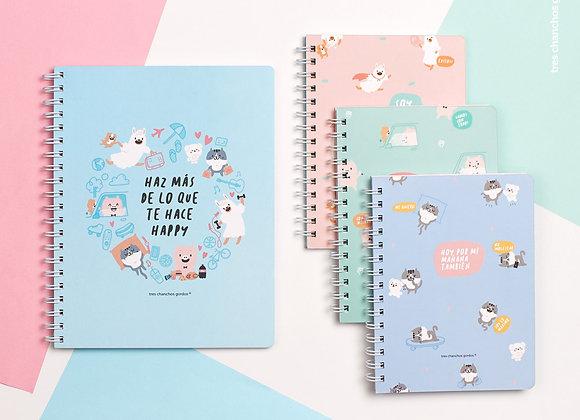 Pack de 4 cuadernos anillados