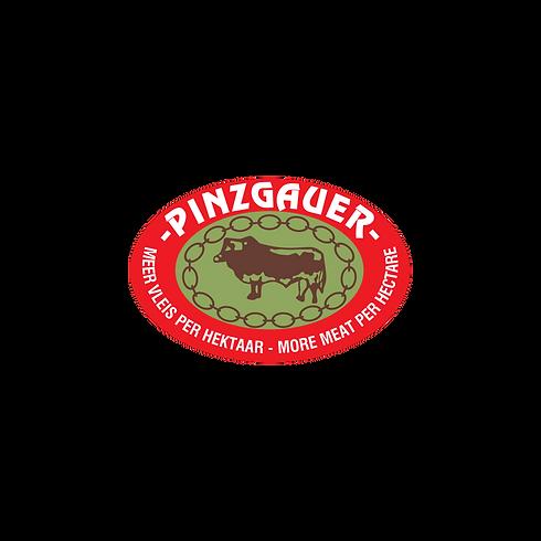 Pinzgauer Vector Logo.png