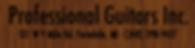 Professional Guitars Inc, Professional Guitar Inc
