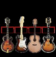 professional guitars inc, guitar store ferndale, guitar shop ferndale, guitar lessons ferndale, guitar store, guitar shop