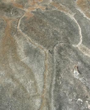 The Emu Rock Engravings
