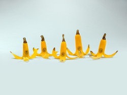 Toledo Bananas 2015 Bunch-Drugs