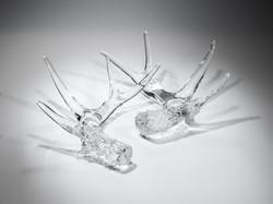Crystal Antlers