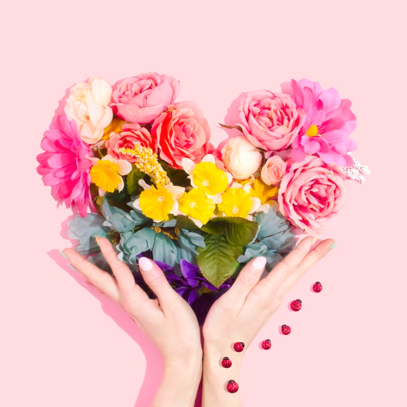 colourful flowers-pink background-hands holding colourful flowers-rainbow of colourful flowers-lady birds-