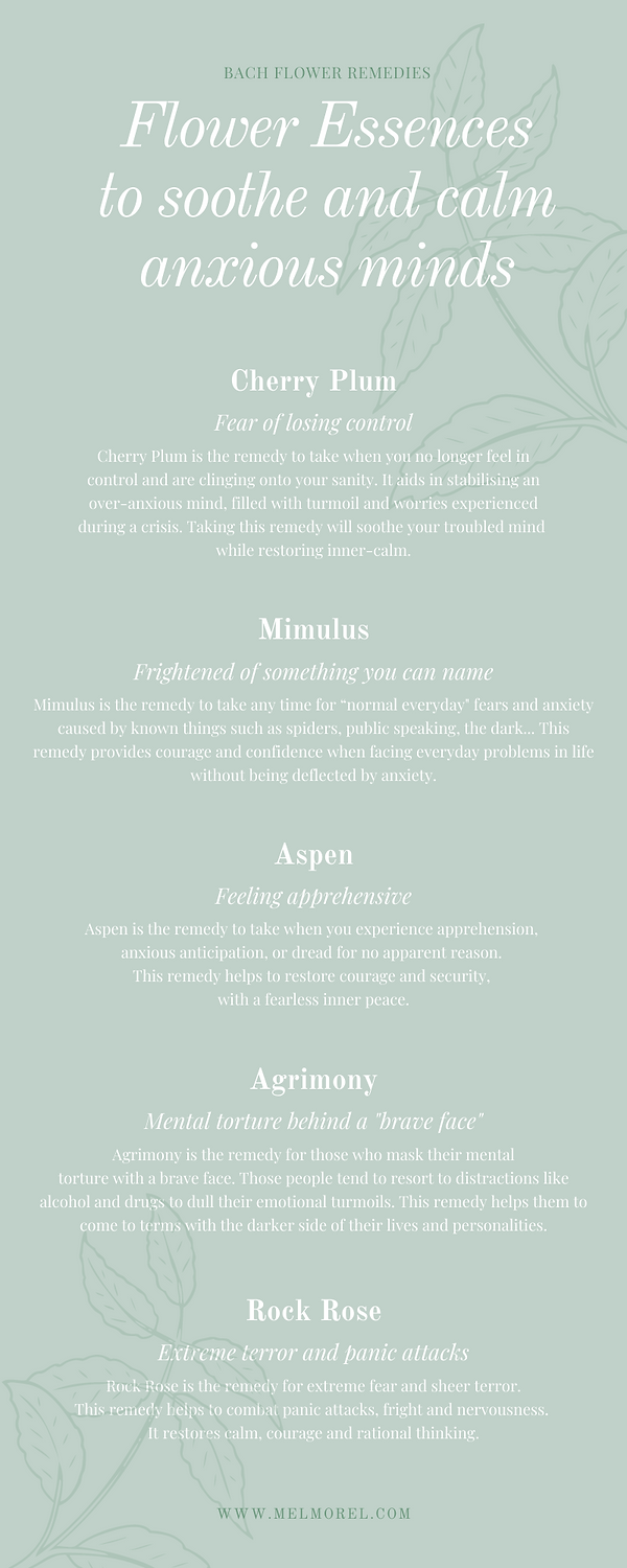 5 Flower essences for anxious minds.png