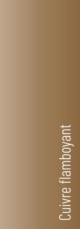 couleursArtboard 1 copy 9.png