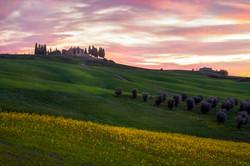 Tuscany Palette