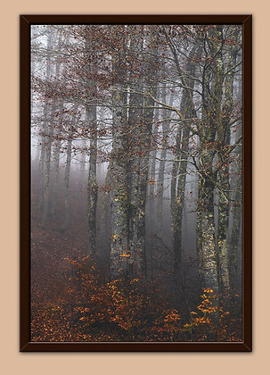 """Touch the Silence 30x20"""" framed aluminium print (76x51cm)"""