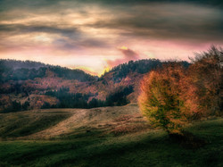 Pastel Autumn