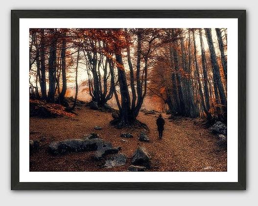 Autumn Promenade fine art print 40''x30''
