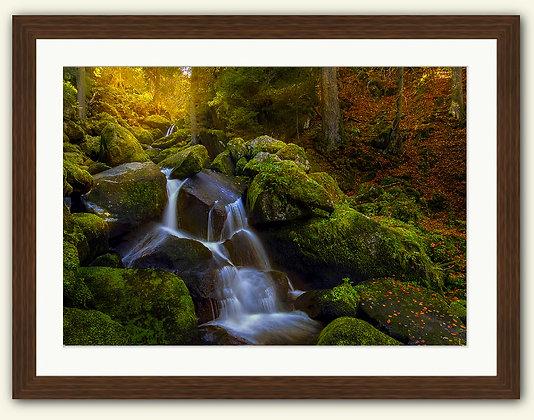 An Earth Song framed fine art print 30x22''