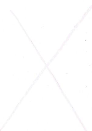 sz31.jpg