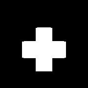THC Detroit_Logo_1_11_23_20-01.png