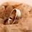 Thumbnail: Moon Ring