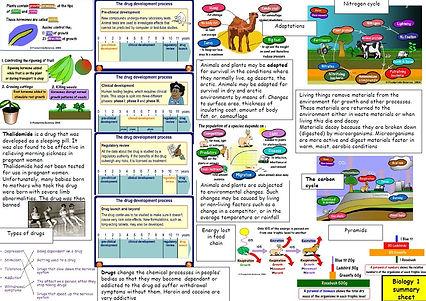 bio 1 summary sheets x3.jpg