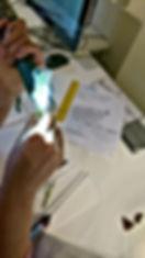 Investigating Elodea for GCSE  Biology
