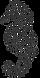 raskraska-morskoi-konek-gray R.png