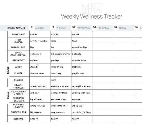 Weekly Wellness Tracker Ebook (example).