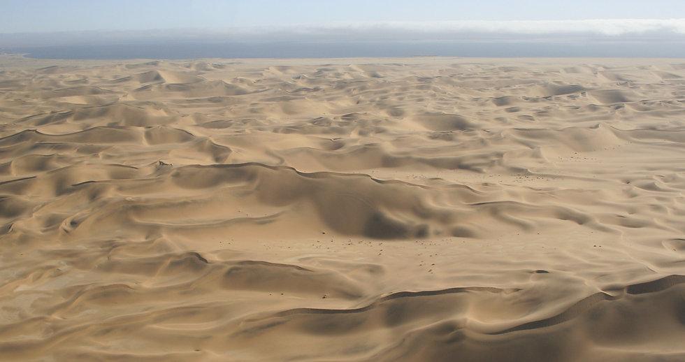 Dune1_edited.jpg