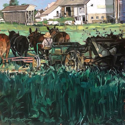 Amish Horsepower 12x12 (20x20 framed)