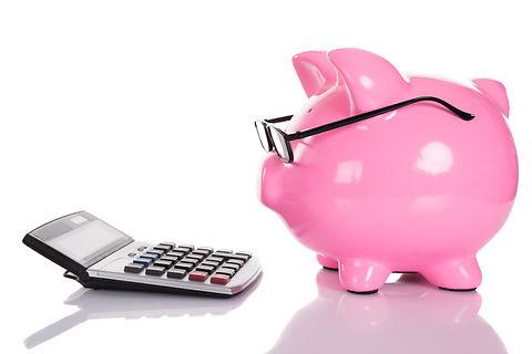 Piggybank looking at calculator. Isolate