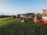 OC lawn - cornhole.jpg