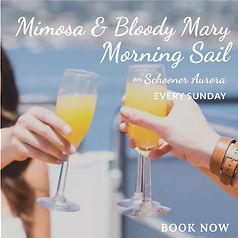 Mimosa Bloody Mary Sail.jpg