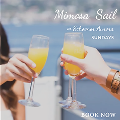 Mimosa Bloody Mary Sail.png