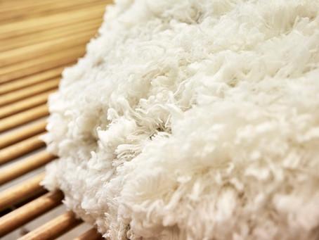 10 reasons why you will love Australian merino wool