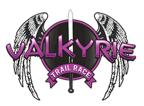 valkyrie website home image.png