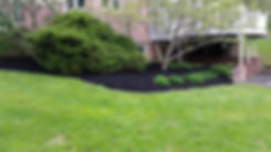 fresh mowed lawn with manicured landscap