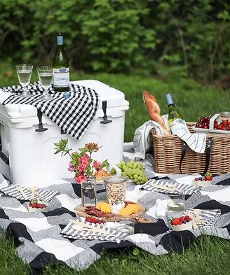 picnic pic 5_edited.jpg