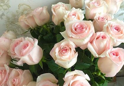 flower pic 1.jpg