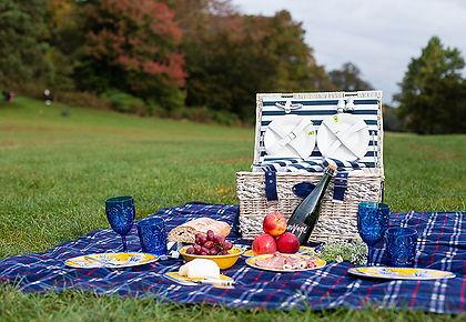 picnic pic 13.jpg