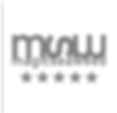 MSW logo.png