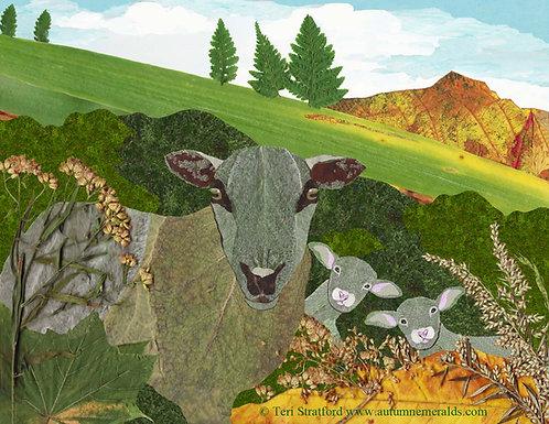 Ewe and the Twins