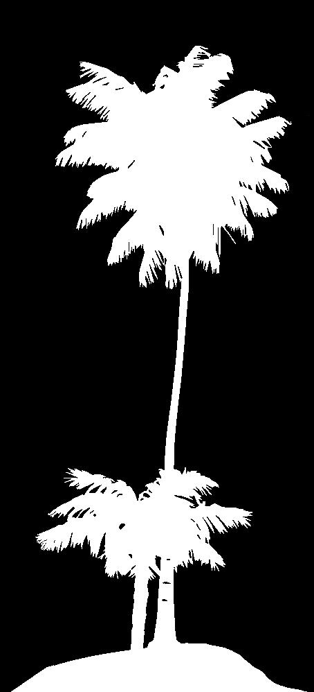 Palmen_einzeln_1.png